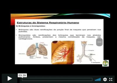 Vídeo de Prevenção: Daniel, da UME Martins Fontes