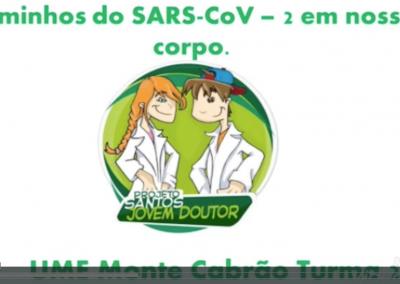 Atividades dos jovens doutores do 7º ano da UME Monte Cabrão